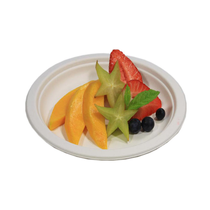 PP7 with Fruit