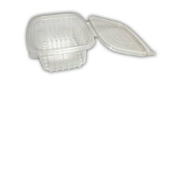 Rectangle Salad Containers