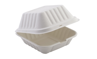 Burger Box Compostable