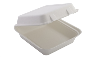 Square Food Box Compostable